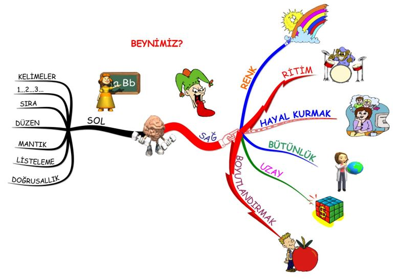 Zihnimin zihin haritasında